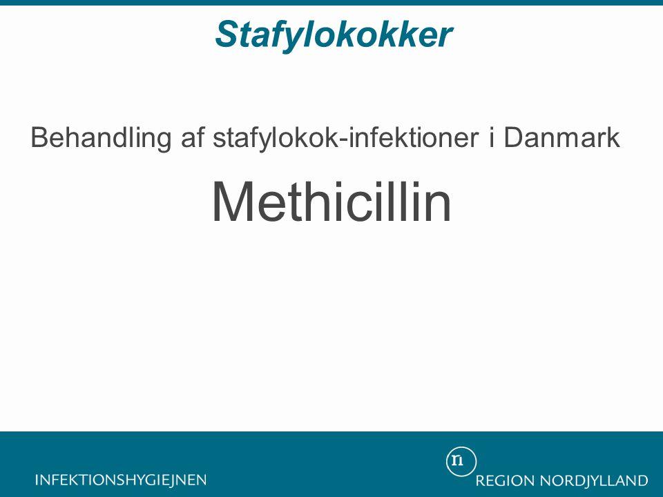 Stafylokokker Behandling af stafylokok-infektioner i Danmark Methicillin