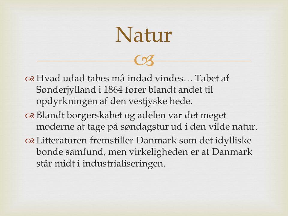  Hvad udad tabes må indad vindes… Tabet af Sønderjylland i 1864 fører blandt andet til opdyrkningen af den vestjyske hede.