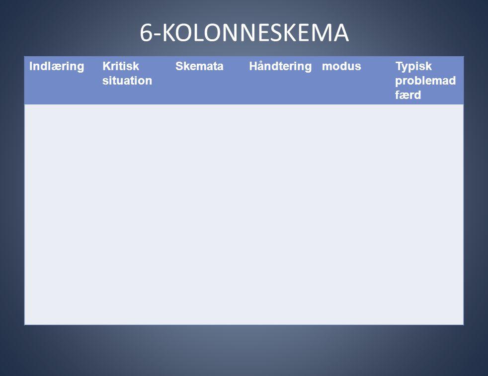 6-KOLONNESKEMA IndlæringKritisk situation SkemataHåndteringmodusTypisk problemad færd