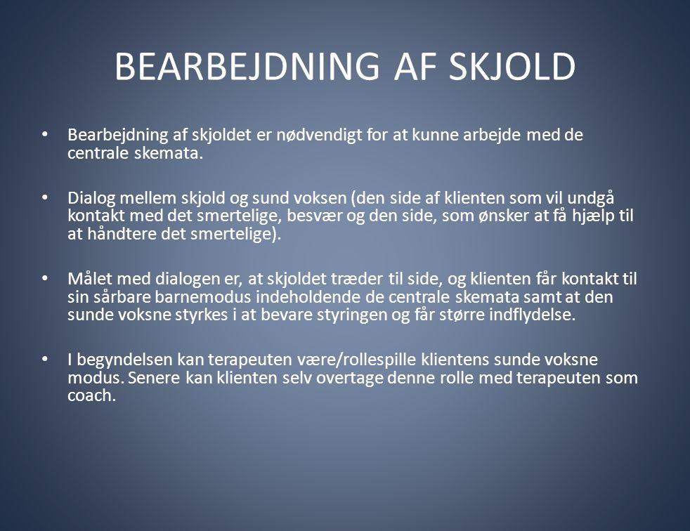 BEARBEJDNING AF SKJOLD • Bearbejdning af skjoldet er nødvendigt for at kunne arbejde med de centrale skemata. • Dialog mellem skjold og sund voksen (d