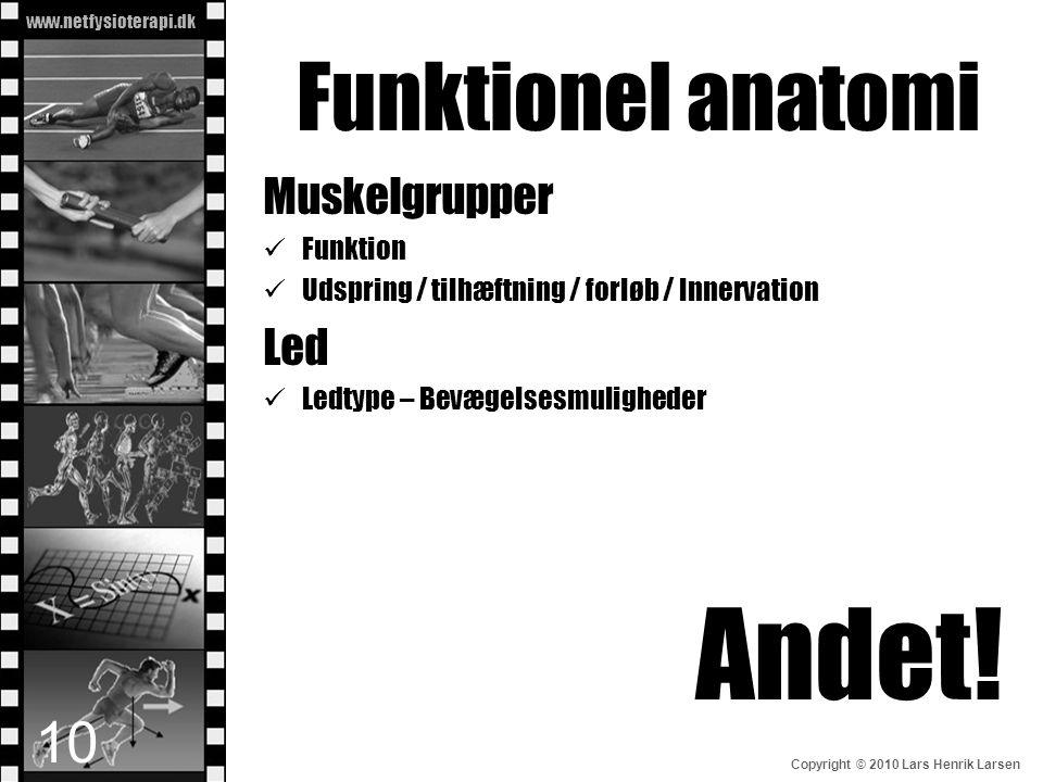 www.netfysioterapi.dk Copyright © 2010 Lars Henrik Larsen Funktionel anatomi 10 Muskelgrupper  Funktion  Udspring / tilhæftning / forløb / Innervati