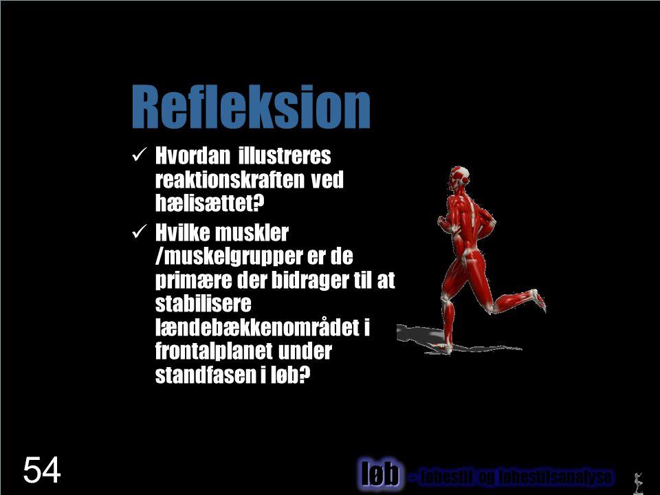 www.netfysioterapi.dk Copyright © 2010 Lars Henrik Larsen Refleksion  Hvordan illustreres reaktionskraften ved hælisættet?  Hvilke muskler /muskelgr
