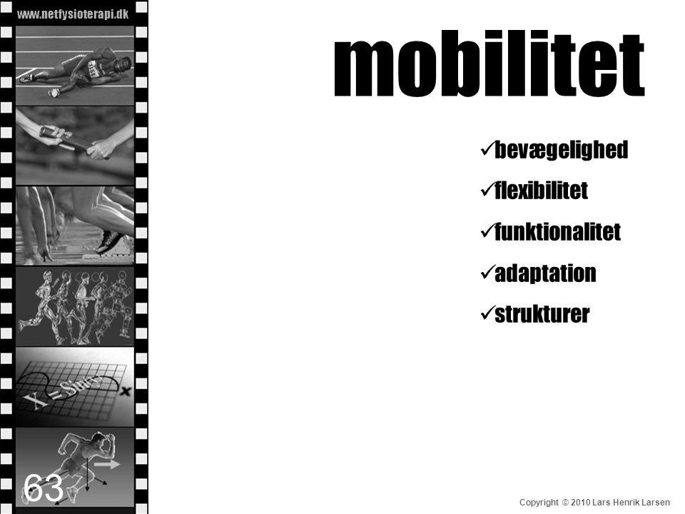 www.netfysioterapi.dk Copyright © 2010 Lars Henrik Larsen mobilitet  bevægelighed  flexibilitet  funktionalitet  adaptation  strukturer 63