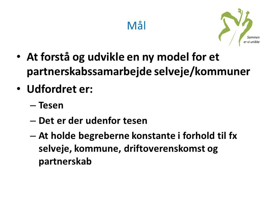 Mål • At forstå og udvikle en ny model for et partnerskabssamarbejde selveje/kommuner • Udfordret er: – Tesen – Det er der udenfor tesen – At holde be