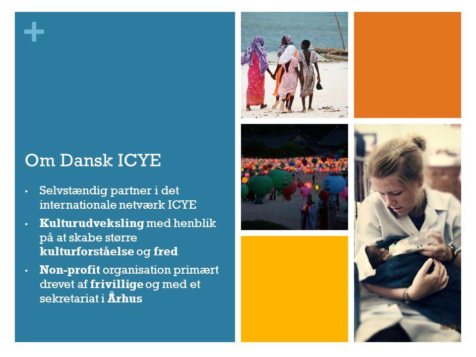 + Om Dansk ICYE • Selvstændig partner i det internationale netværk ICYE • Kulturudveksling med henblik på at skabe større kulturforståelse og fred • Non-profit organisation primært drevet af frivillige og med et sekretariat i Århus