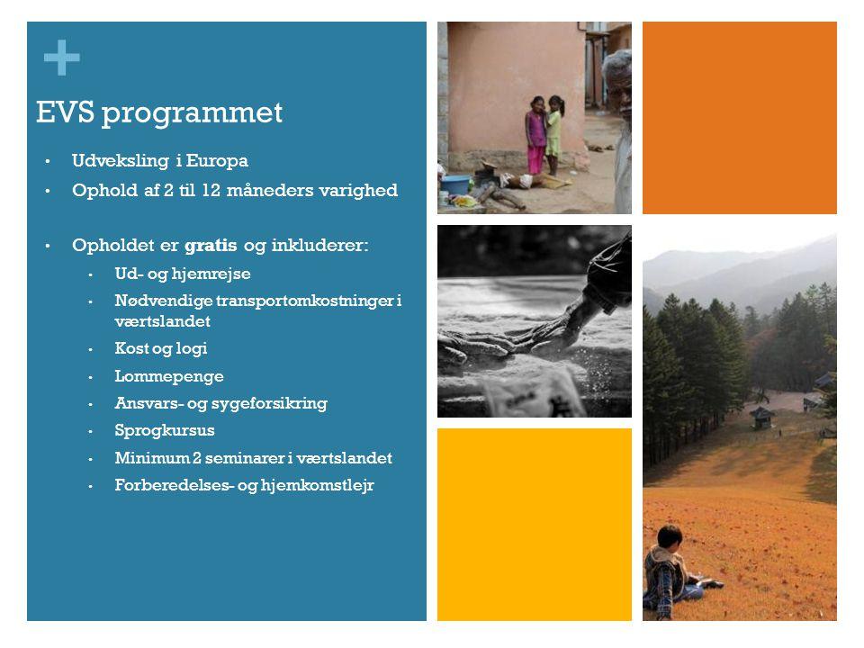 + EVS programmet • Udveksling i Europa • Ophold af 2 til 12 måneders varighed • Opholdet er gratis og inkluderer: • Ud- og hjemrejse • Nødvendige transportomkostninger i værtslandet • Kost og logi • Lommepenge • Ansvars- og sygeforsikring • Sprogkursus • Minimum 2 seminarer i værtslandet • Forberedelses- og hjemkomstlejr