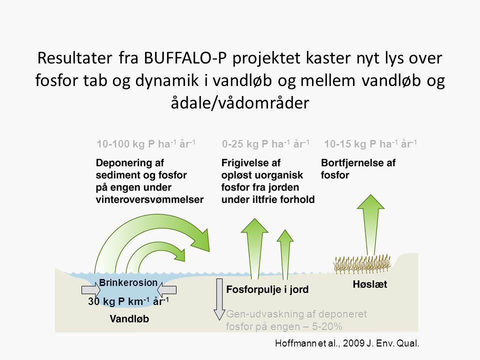 Resultater fra BUFFALO-P projektet kaster nyt lys over fosfor tab og dynamik i vandløb og mellem vandløb og ådale/vådområder 10-100 kg P ha -1 år -1 1