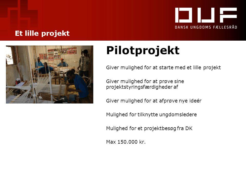 Et lille projekt Pilotprojekt Giver mulighed for at starte med et lille projekt Giver mulighed for at prøve sine projektstyringsfærdigheder af Giver m