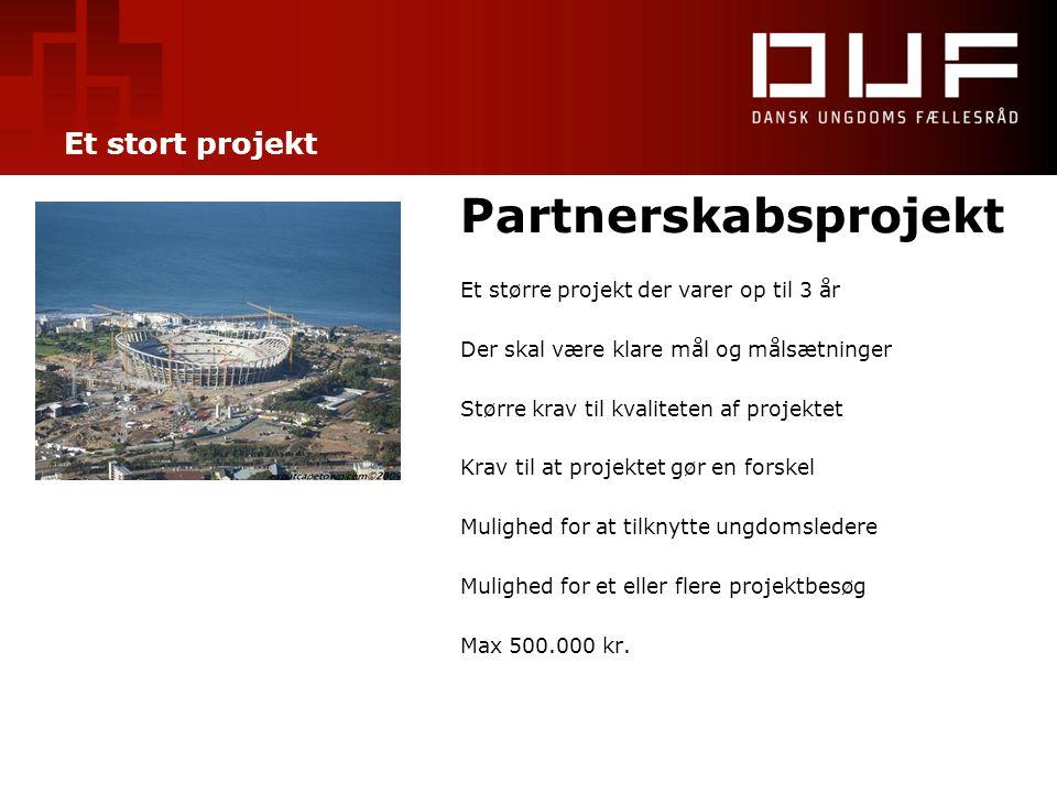 Et stort projekt Partnerskabsprojekt Et større projekt der varer op til 3 år Der skal være klare mål og målsætninger Større krav til kvaliteten af pro