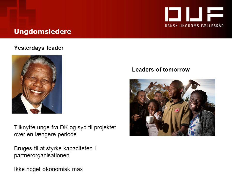 Ungdomsledere Yesterdays leader Leaders of tomorrow Tilknytte unge fra DK og syd til projektet over en længere periode Bruges til at styrke kapacitete