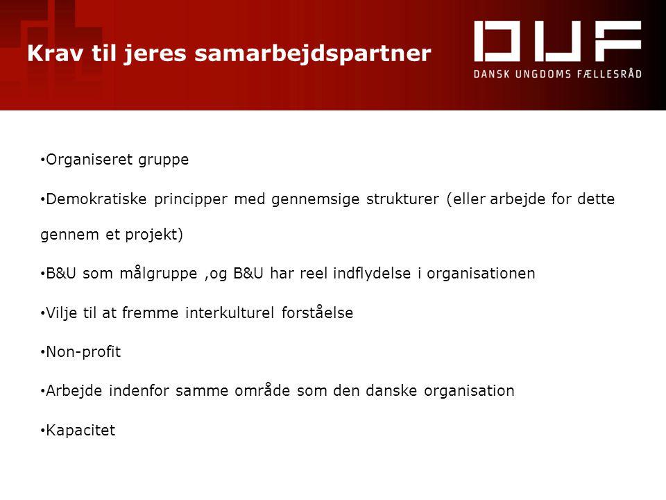 Krav til jeres samarbejdspartner • Organiseret gruppe • Demokratiske principper med gennemsige strukturer (eller arbejde for dette gennem et projekt)