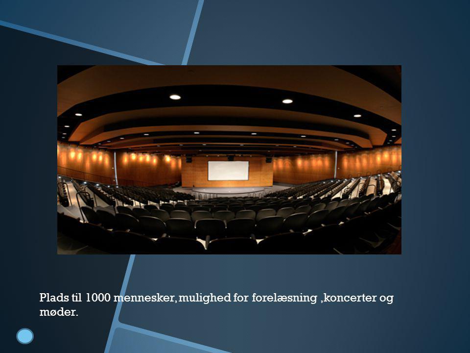 Foredragsal Plads til 1000 mennesker, mulighed for forelæsning,koncerter og møder.