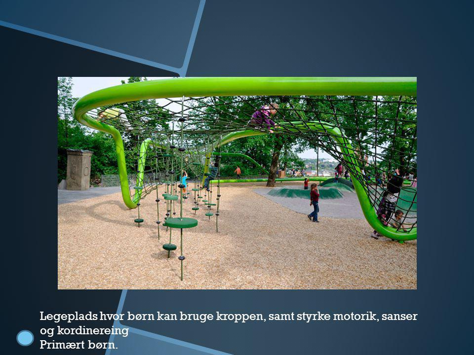Legeplads Legeplads hvor børn kan bruge kroppen, samt styrke motorik, sanser og kordinereing Primært børn.