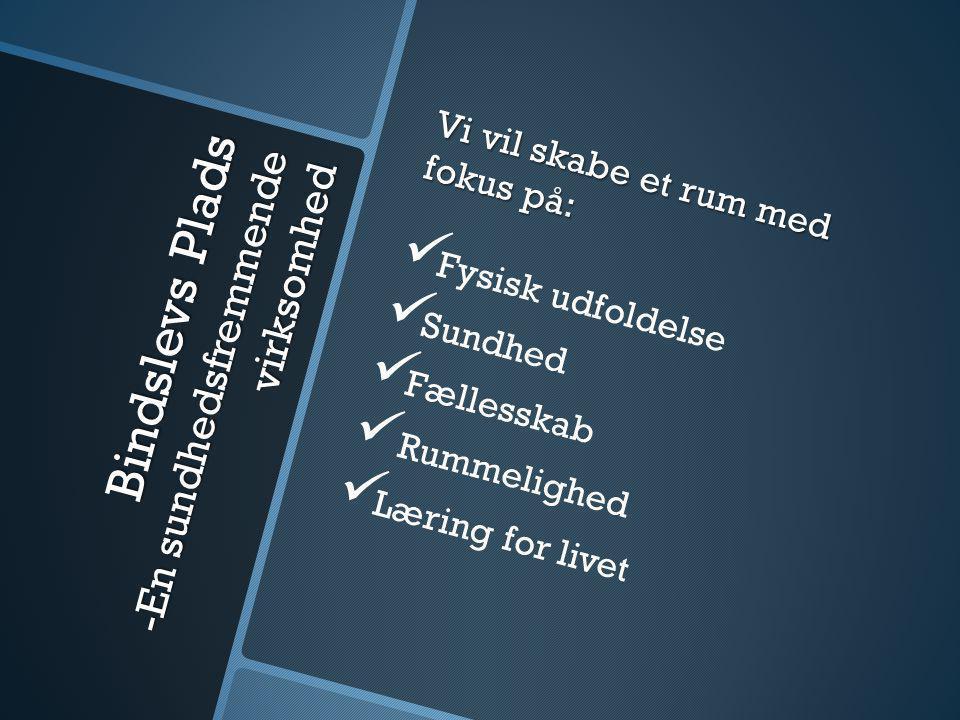 Bindslevs Plads -En sundhedsfremmende virksomhed Vi vil skabe et rum med fokus på:   Fysisk udfoldelse   Sundhed   Fællesskab   Rummelighed   Læring for livet
