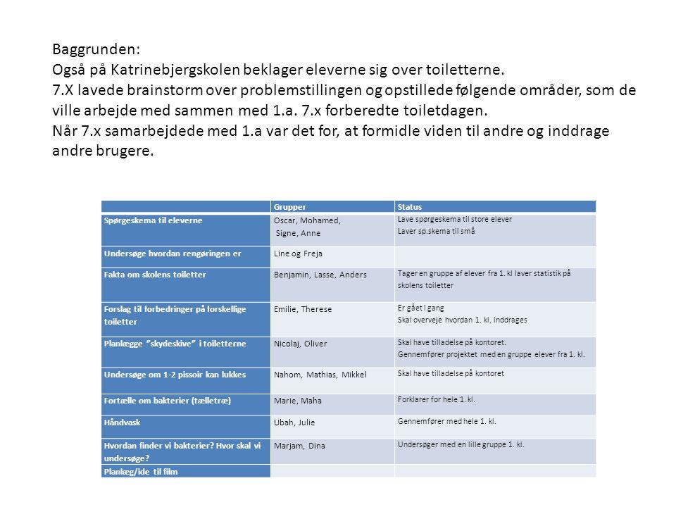 Baggrunden: Også på Katrinebjergskolen beklager eleverne sig over toiletterne. 7.X lavede brainstorm over problemstillingen og opstillede følgende omr