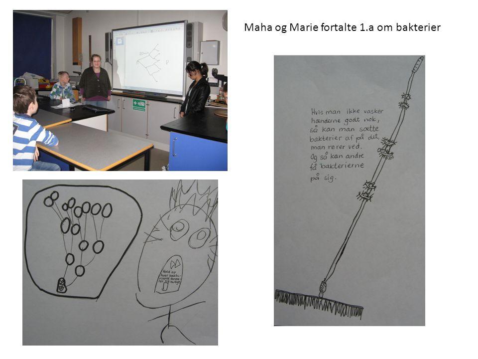 Maha og Marie fortalte 1.a om bakterier