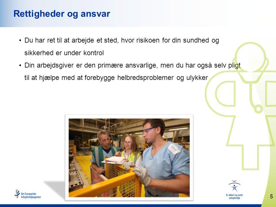 5 www.healthy-workplaces.eu Rettigheder og ansvar •Du har ret til at arbejde et sted, hvor risikoen for din sundhed og sikkerhed er under kontrol •Din