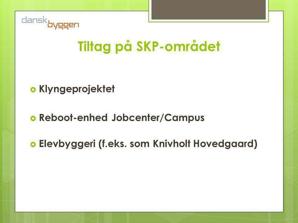Tiltag på SKP-området  Klyngeprojektet  Reboot-enhed Jobcenter/Campus  Elevbyggeri (f.eks.
