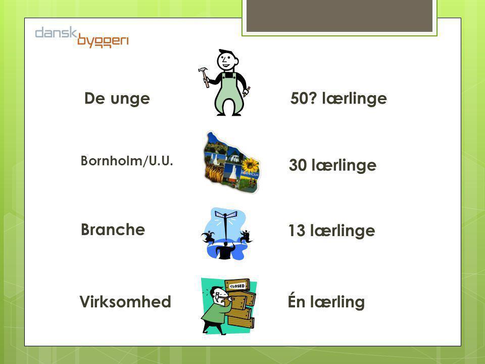 Virksomhed Branche Bornholm/U.U. De unge Én lærling 13 lærlinge 30 lærlinge 50 lærlinge