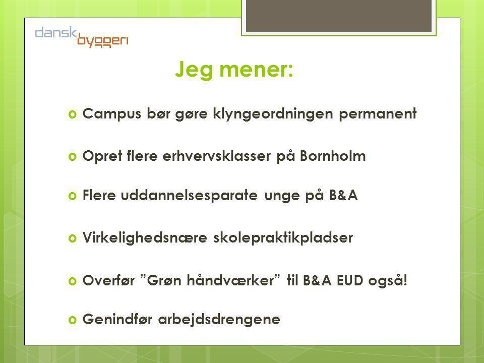 Jeg mener:  Campus bør gøre klyngeordningen permanent  Opret flere erhvervsklasser på Bornholm  Flere uddannelsesparate unge på B&A  Virkelighedsnære skolepraktikpladser  Overfør Grøn håndværker til B&A EUD også.