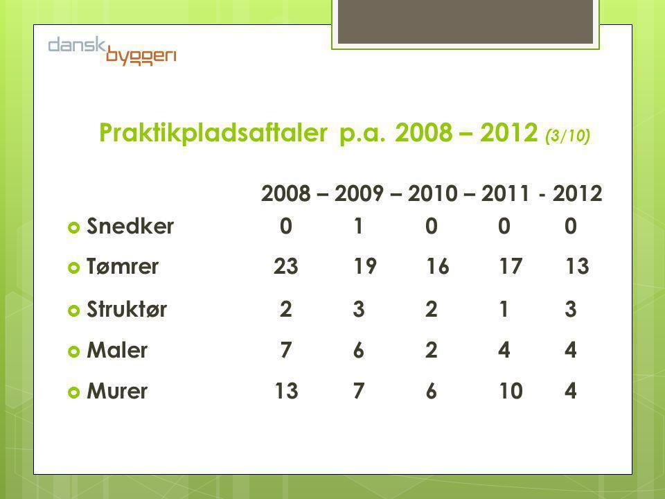 Virksomhed Branche Bornholm/U.U. De unge Én lærling 13 lærlinge 30 lærlinge 50? lærlinge