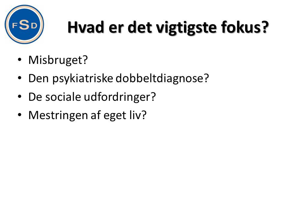Hvad er det vigtigste fokus? • Misbruget? • Den psykiatriske dobbeltdiagnose? • De sociale udfordringer? • Mestringen af eget liv?