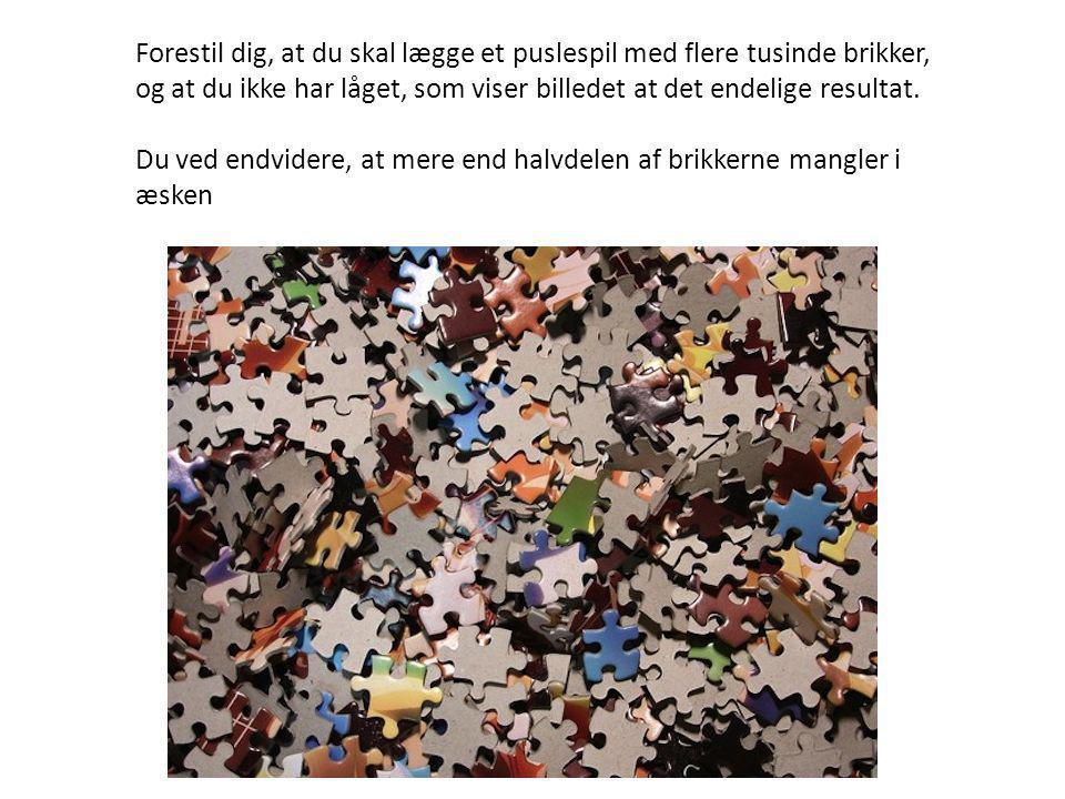 Forestil dig, at du skal lægge et puslespil med flere tusinde brikker, og at du ikke har låget, som viser billedet at det endelige resultat.