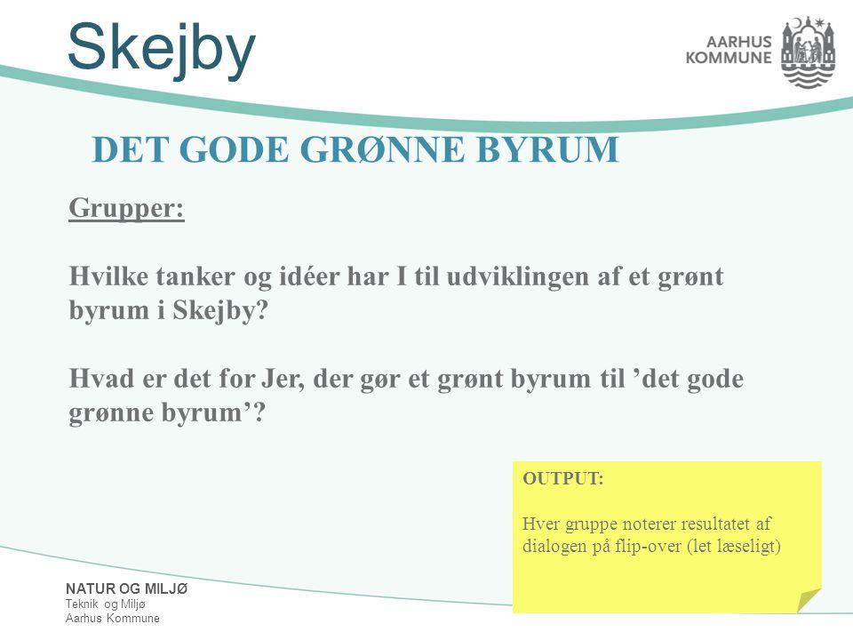 NATUR OG MILJØ Teknik og Miljø Aarhus Kommune Skejby DET GODE GRØNNE BYRUM Grupper: Hvilke tanker og idéer har I til udviklingen af et grønt byrum i Skejby.