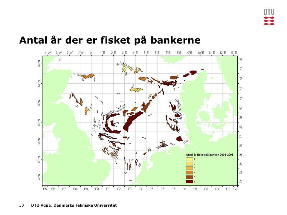 50DTU Aqua, Danmarks Tekniske Universitet Antal år der er fisket på bankerne