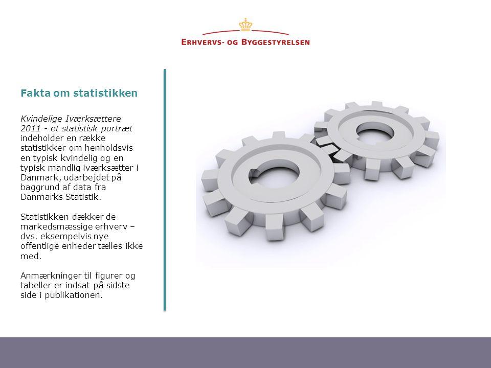 2 Kvindelige Iværksættere 2011 - et statistisk portræt indeholder en række statistikker om henholdsvis en typisk kvindelig og en typisk mandlig iværksætter i Danmark, udarbejdet på baggrund af data fra Danmarks Statistik.