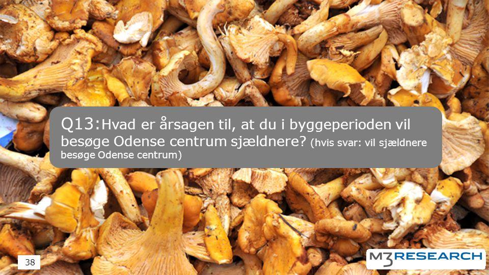 Q13: Hvad er årsagen til, at du i byggeperioden vil besøge Odense centrum sjældnere.