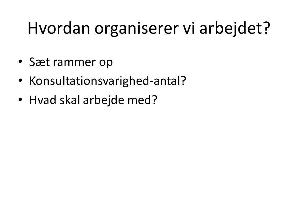 Hvordan organiserer vi arbejdet? • Sæt rammer op • Konsultationsvarighed-antal? • Hvad skal arbejde med?