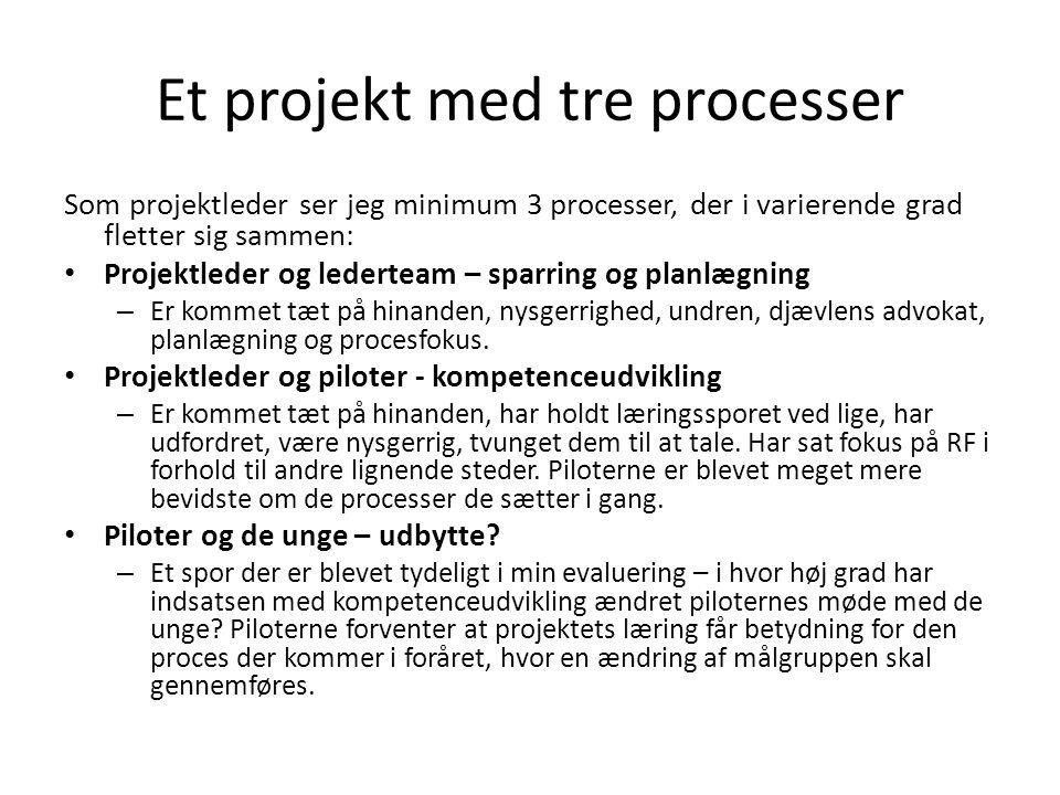 Et projekt med tre processer Som projektleder ser jeg minimum 3 processer, der i varierende grad fletter sig sammen: • Projektleder og lederteam – sparring og planlægning – Er kommet tæt på hinanden, nysgerrighed, undren, djævlens advokat, planlægning og procesfokus.