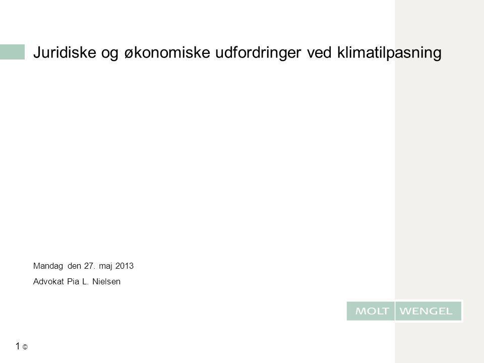 1 © Juridiske og økonomiske udfordringer ved klimatilpasning Mandag den 27. maj 2013 Advokat Pia L. Nielsen