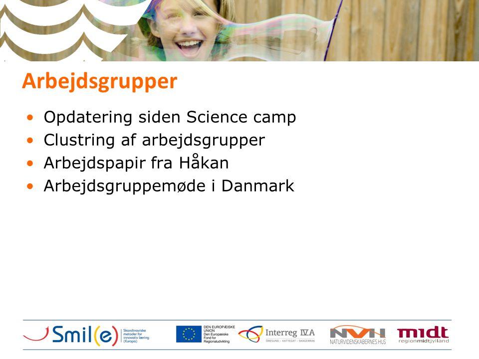 Arbejdsgrupper •Opdatering siden Science camp •Clustring af arbejdsgrupper •Arbejdspapir fra Håkan •Arbejdsgruppemøde i Danmark