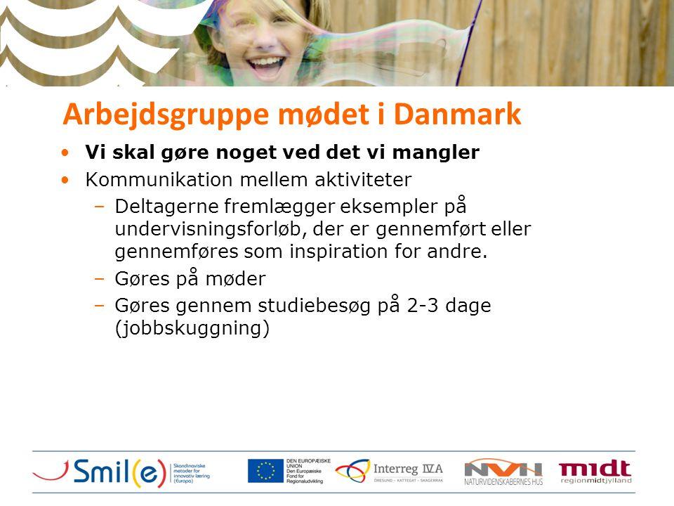Arbejdsgruppe mødet i Danmark •Vi skal gøre noget ved det vi mangler •Kommunikation mellem aktiviteter –Deltagerne fremlægger eksempler på undervisnin