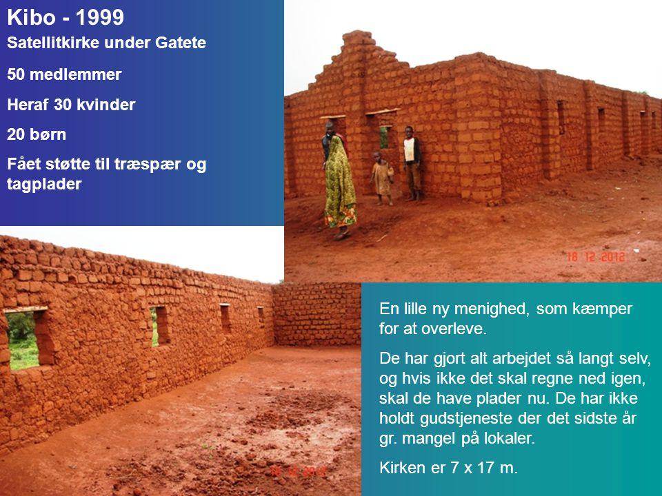 Kibo - 1999 Satellitkirke under Gatete 50 medlemmer Heraf 30 kvinder 20 børn Fået støtte til træspær og tagplader En lille ny menighed, som kæmper for at overleve.