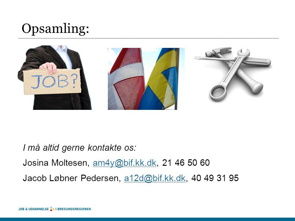 Opsamling: I må altid gerne kontakte os: Josina Moltesen, am4y@bif.kk.dk, 21 46 50 60am4y@bif.kk.dk Jacob Løbner Pedersen, a12d@bif.kk.dk, 40 49 31 95a12d@bif.kk.dk