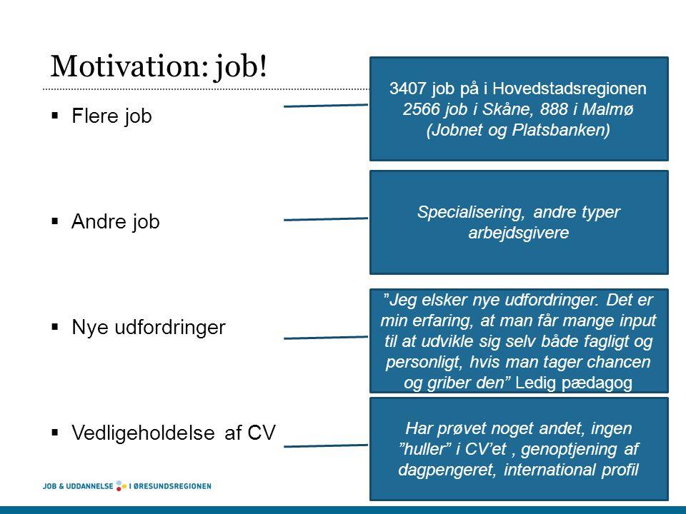 Motivation: Derfor overvejer jeg job i Malmø Kilde: Spørgeskema blandt pædagoger, der overvejer at søge job i Sverige 2012