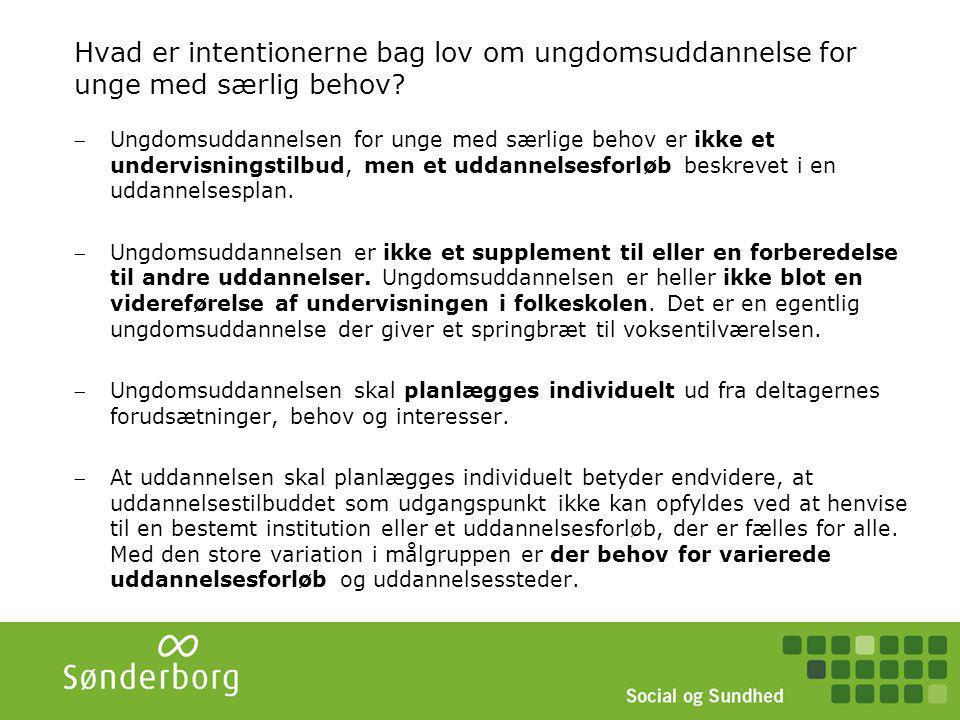 Antal elever Det forventes, at der er 2,3 % af en ungdomsårgang der er i målgruppen til et STU tilbud (ministeriet for Børn og Uddannelse) I Sønderborg svarer det til ca.