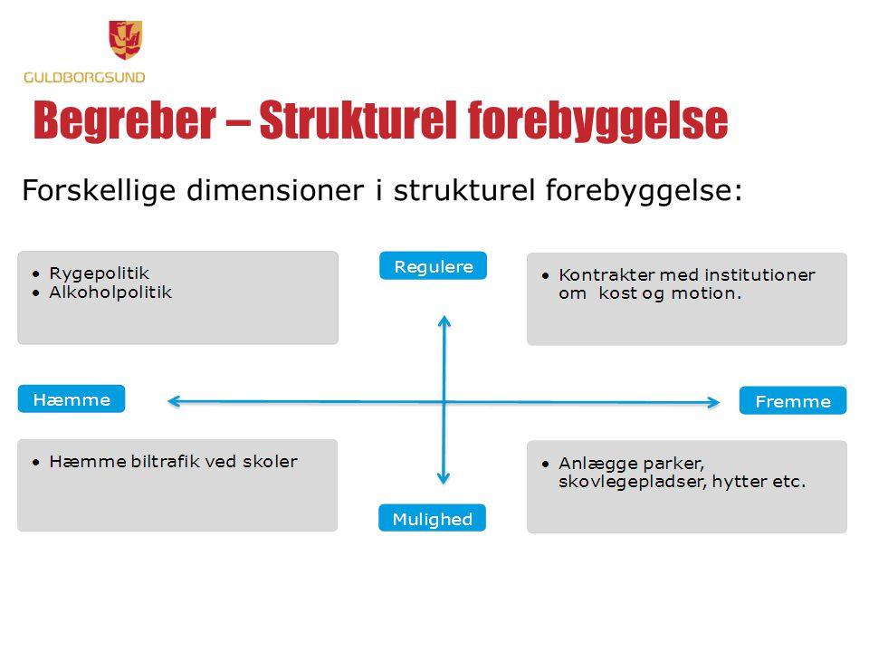 Begreber – Strukturel forebyggelse Forskellige dimensioner i strukturel forebyggelse: