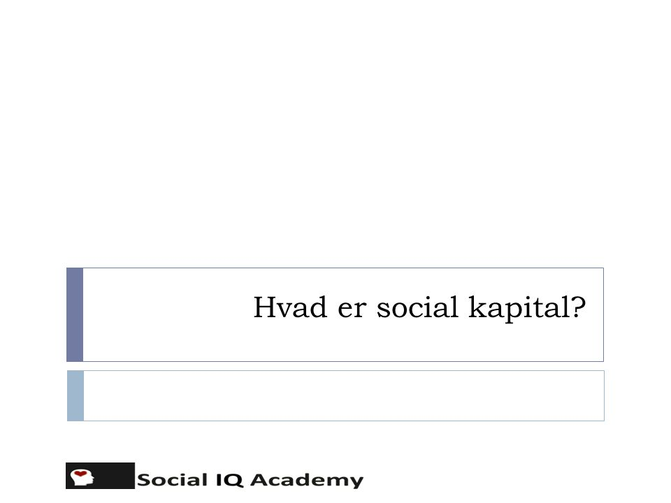 Hvad er social kapital? 3