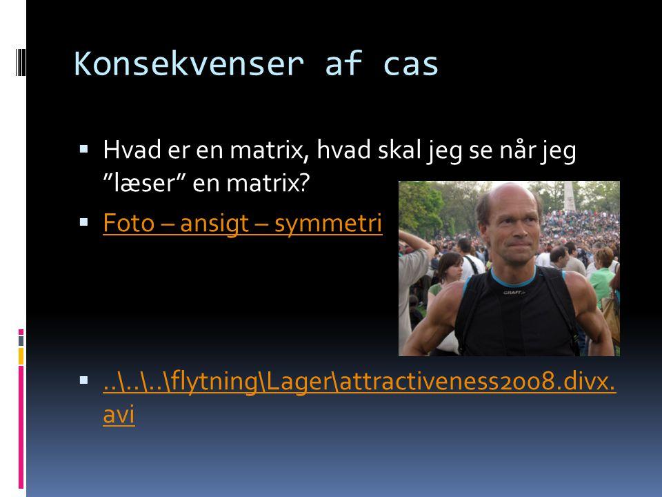 """Konsekvenser af cas  Hvad er en matrix, hvad skal jeg se når jeg """"læser"""" en matrix?  Foto – ansigt – symmetri Foto – ansigt – symmetri ..\..\..\fly"""