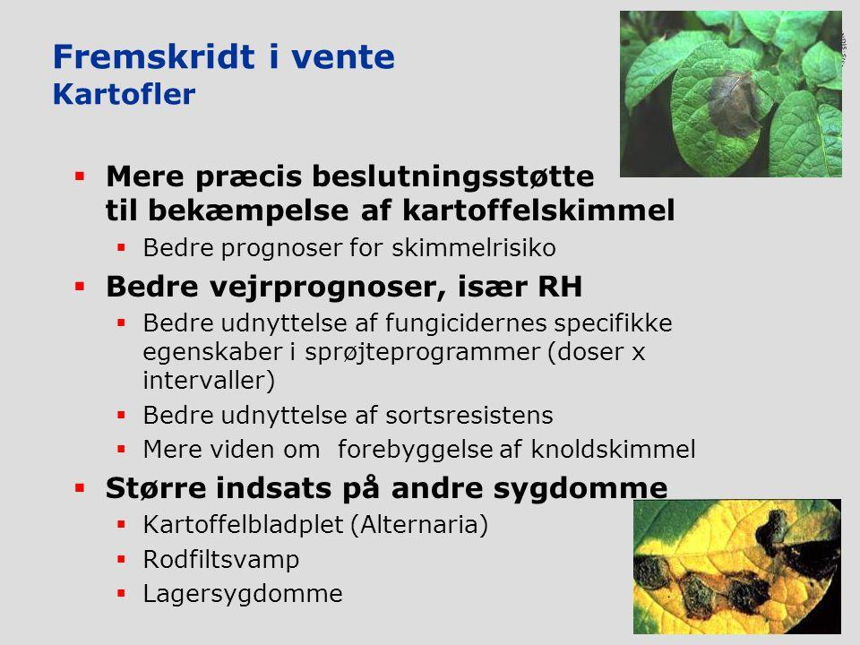 Fremskridt i vente Kartofler  Mere præcis beslutningsstøtte til bekæmpelse af kartoffelskimmel  Bedre prognoser for skimmelrisiko  Bedre vejrprognoser, især RH  Bedre udnyttelse af fungicidernes specifikke egenskaber i sprøjteprogrammer (doser x intervaller)  Bedre udnyttelse af sortsresistens  Mere viden om forebyggelse af knoldskimmel  Større indsats på andre sygdomme  Kartoffelbladplet (Alternaria)  Rodfiltsvamp  Lagersygdomme