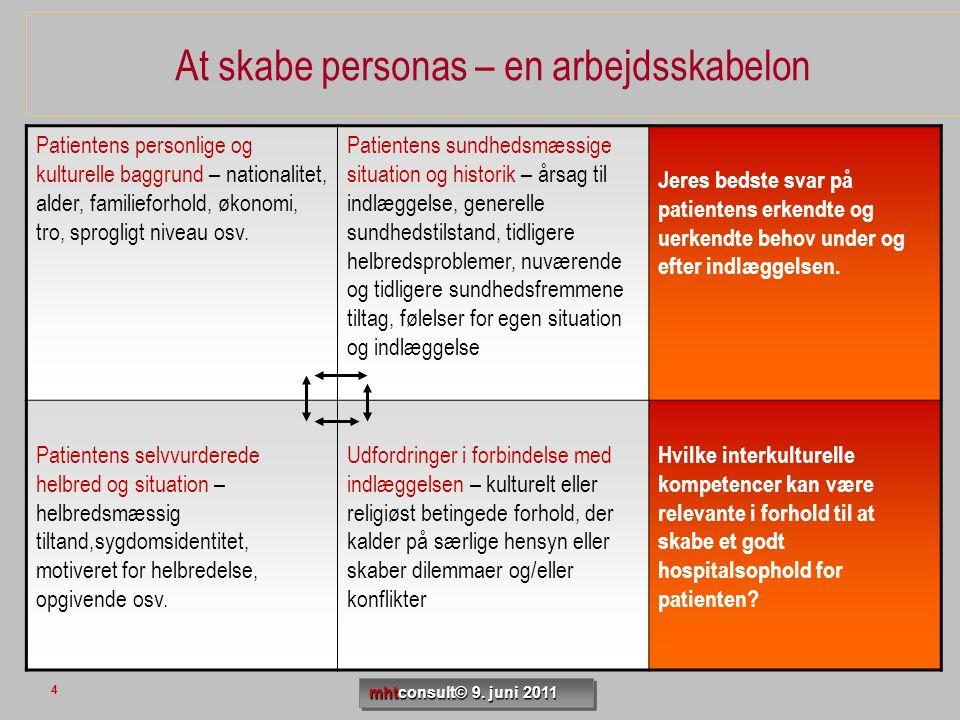 At skabe personas – en arbejdsskabelon Patientens personlige og kulturelle baggrund – nationalitet, alder, familieforhold, økonomi, tro, sprogligt niv