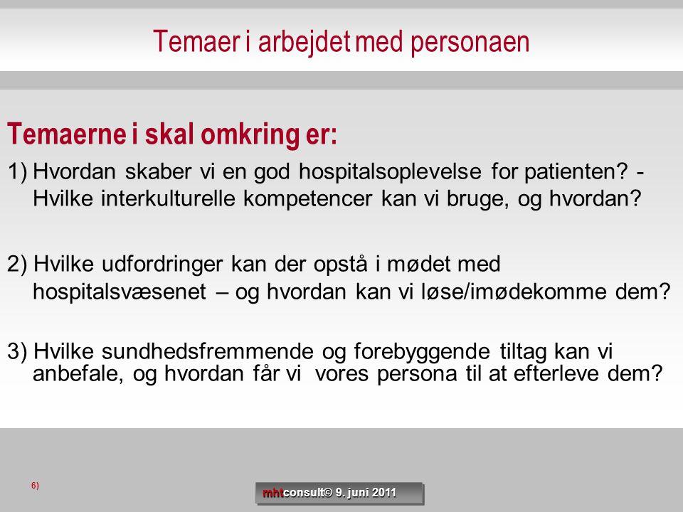 Temaer i arbejdet med personaen Temaerne i skal omkring er: 1)Hvordan skaber vi en god hospitalsoplevelse for patienten? - Hvilke interkulturelle komp