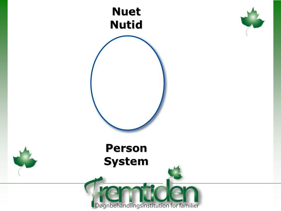 Nuet Nutid Person System