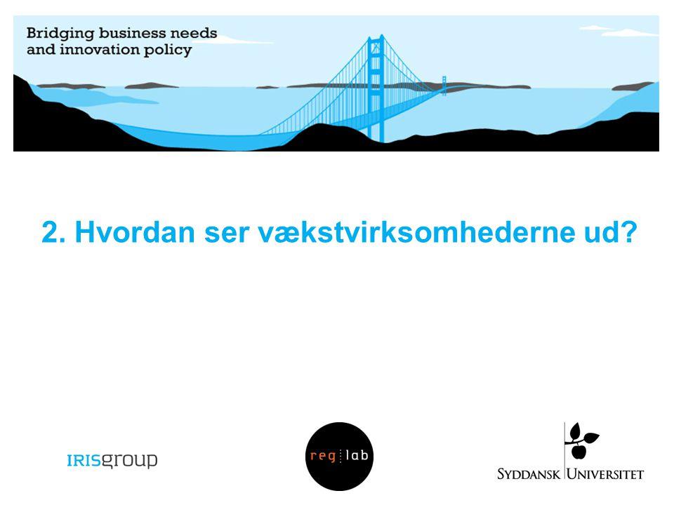 2. Hvordan ser vækstvirksomhederne ud?