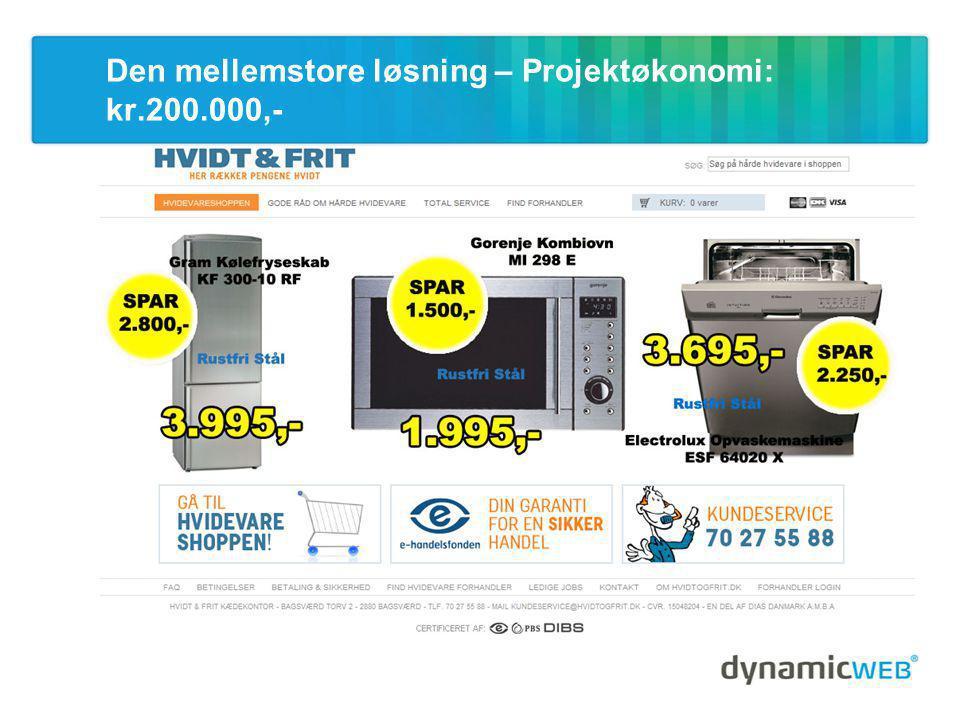 Den mellemstore løsning – Projektøkonomi: kr.200.000,-