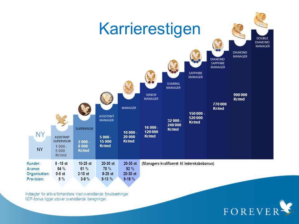 Karrierestigen 1 000 - 5 000 Kr/md 2 000 - 8 000 Kr/md 10 000 - 20 000 Kr/md 16 000 - 120 000 Kr/md 32 000 - 240 000 Kr/md 150 000 - 520 000 Kr/md 900
